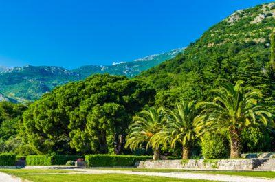 Вид на парк и горы в Черногории