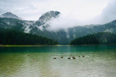 Окрестные территории Черного озера