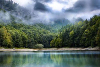 О парке Биоградская гора
