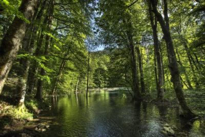 Что можно посмотреть в парке Биоградская гора