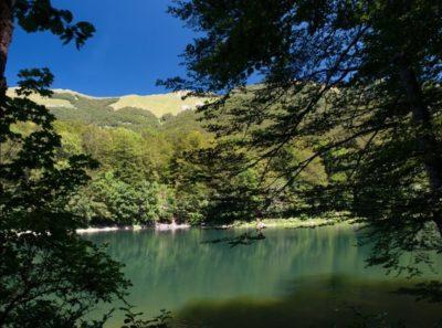 Национальный парк Биоградская гора