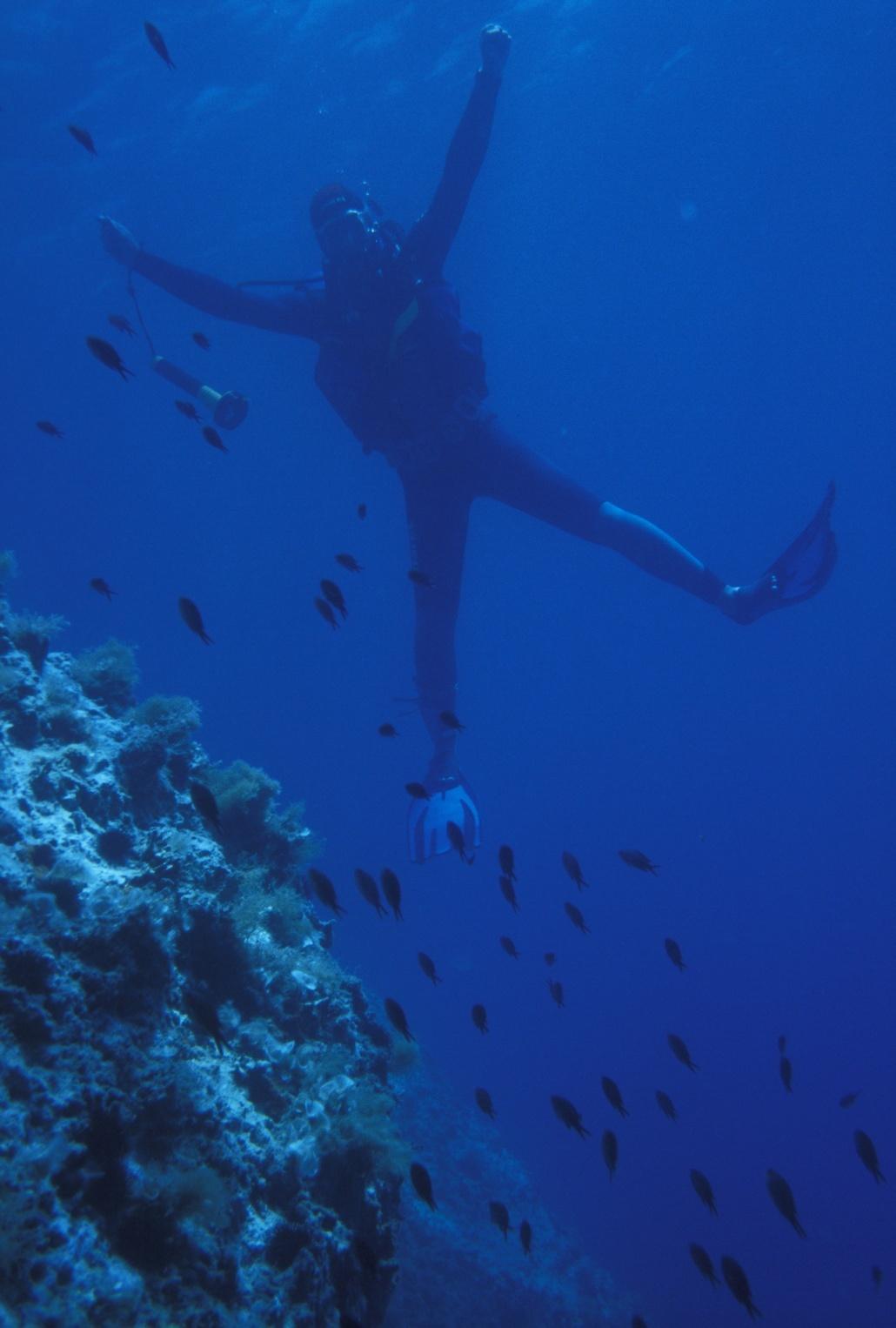 Что есть под водой