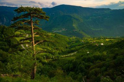 Холмы вокруг каньона реки Тара, Черногория