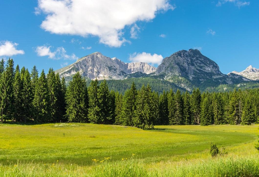 Экскурсия горы Черногории