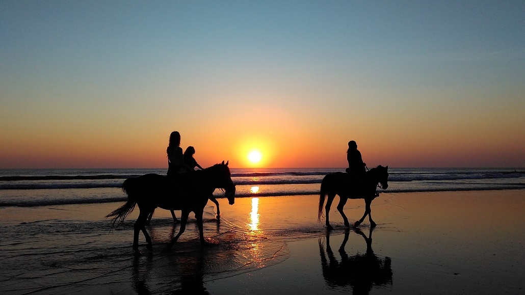 Конные прогулки в Черногории