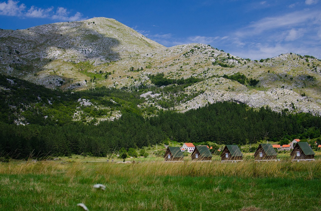 Small houses and grass meadow near Negushi village, Montenegro