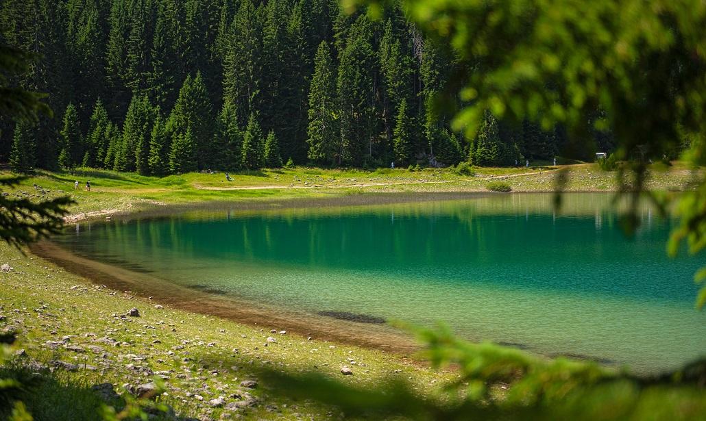 Черное озеро в Монтенегро