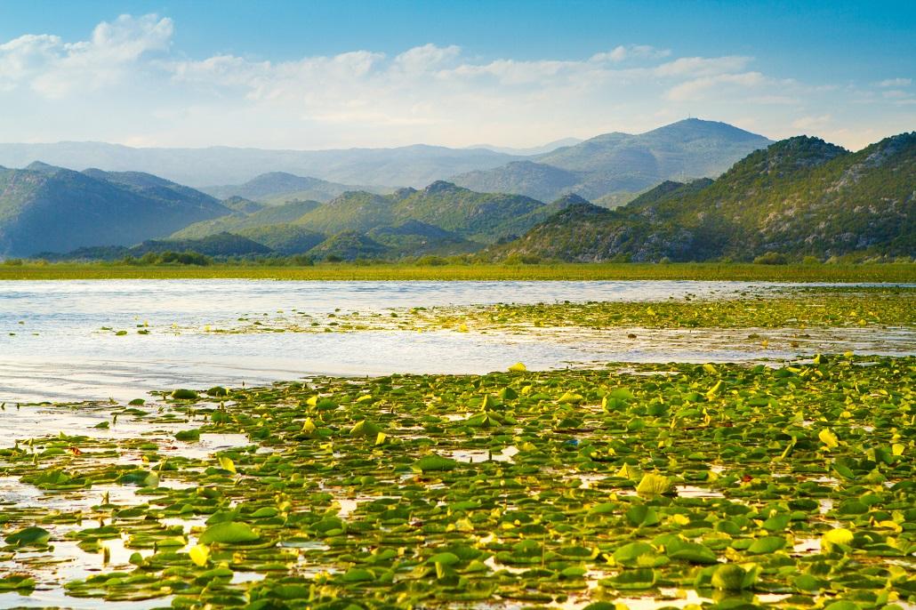 Lake Skadar national park on Montenegro
