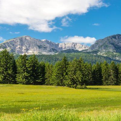 Спортивный туризм и активный отдых в Черногории - мероприятия и корпоративы