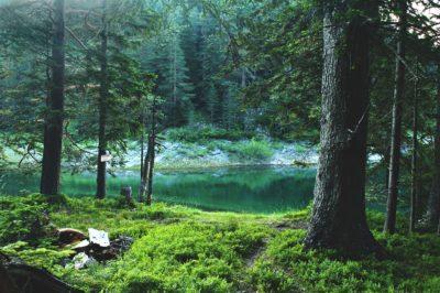 Черное озеро Черногории