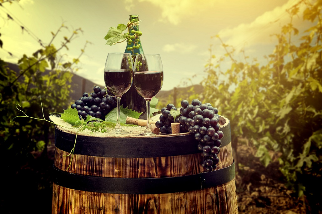 Винория на Скадарском озере